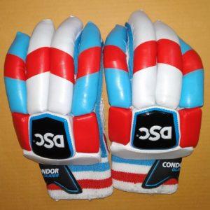 DSC Condor Glider batting gloves Traditional Batting Gloves